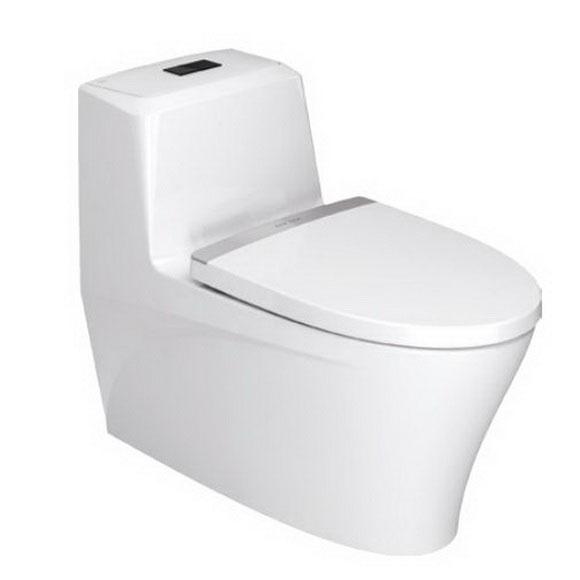 思睿 4.8升节水型连体座厕(豪华版)